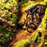 Münchner Bike Trails